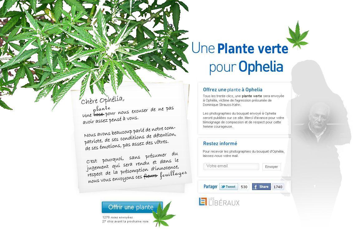 Une plante verte pour oph lia gauche lib rale for Recherche sur les plantes vertes